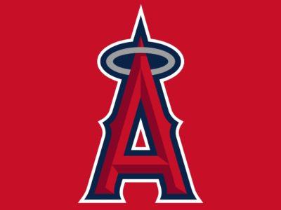 Family Fun Anaheim Angels